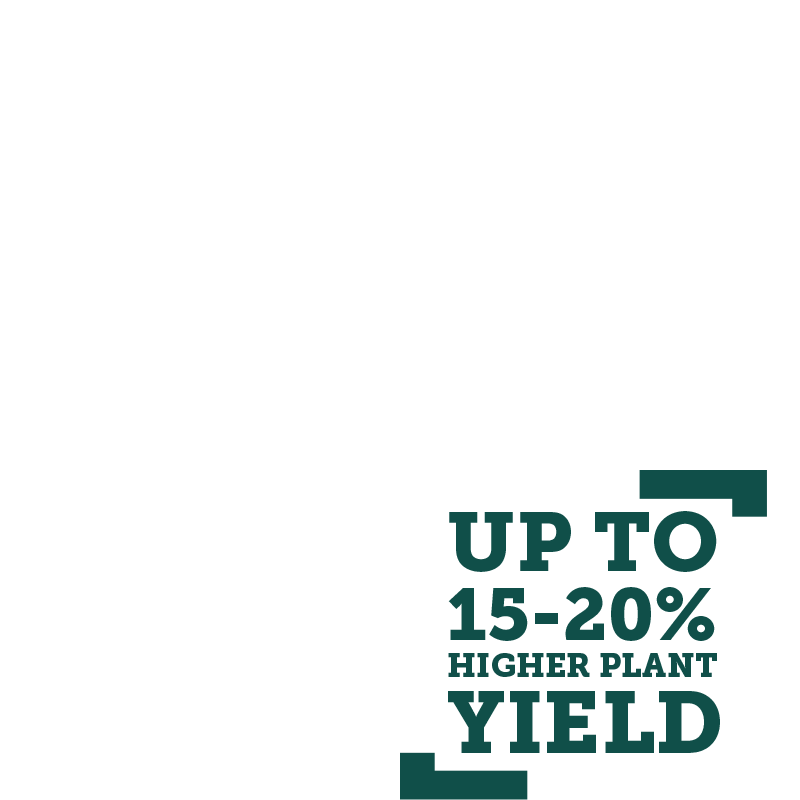 up-to-15-20%-higher-yield.png